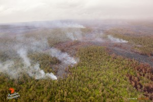 This photo, taken on May 6, shows a view of the distal tip of the June 27 lava flow, approximately 5 miles downslope from Pu'u 'O'o, and 8 miles upslope of Pahoa. The haze in this photo is rain. Photo credit: Extreme Exposure Media/Paradise Helicopters.