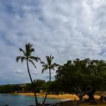 Mayor to Close Hawai'i County Beaches