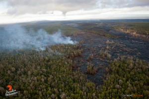 June 11: The distal tip remains about 8 miles upslope of Pahoa, and continues to push into an ohia forest. Photo: Extreme Exposure Media/Paradise Helicopters.