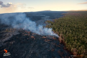 June 11: Activity along the northern tree line continues, as lava creeps into the adjacent ohia forest. Photo: Extreme Exposure Media/Paradise Helicopters.
