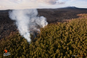 June 25: Robust activity was observed about two miles downslope of Pu'u 'O'o, as lava continues to push into the adjacent 'ohia forest.  Photo: Extreme Exposure Media/Paradise Helicopters.