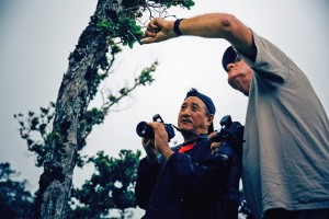 Photographers-in-residence Nate Yuen (left) and Jack Jeffrey examine a kahuli tree snail on an ʻōhiʻa tree during the project team's first shoot together on Kohala Mountain. (Photo © Andrew Richard Hara)