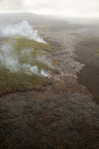 June 30: Active pāhoehoe lava is scattered over a broad area northeast of Puʻu ʻŌʻō, but has not advanced significantly over the past month. Tuesday, the farthest active lava was about 7.5 km (4.7 miles) from the vent on Puʻu ʻŌʻō, with the leading tip of this breakout burning vegetation. Aerial view towards the southwest. Puʻu ʻŌʻō is in the upper left. USGS/HVO photo.