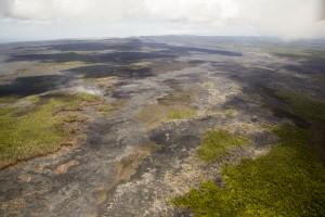 July 23: This photograph looks west along the East Rift Zone, towards Puʻu ʻŌʻō and Kīlauea's summit. Puʻu ʻŌʻō can be seen near the horizon, on the left side of the image. Kīlauea's summit plume can be seen in the distance in the upper right portion of the photograph. USGS/HVO photo.