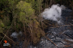 July 9: Lava near the distal tip has entered several ground cracks, creating rising puffs of steam.  Photo: Extreme Exposure Media/Paradise Helicopters.