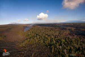 July 16:  The eastern most distal tip continues to creep over an old 'a'a flow and consume a bordering 'ohia forest. Pu'u 'O'o crater (left), Mauna Loa, and Mauna Kea line the horizon in this photo.   Photo: Extreme Exposure Media/Paradise Helicopters.