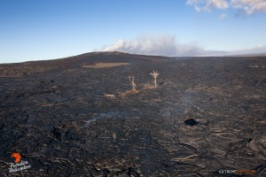 July 16: A sliver of old lava and a couple dead trees are all that remain of Pu'u Kahauale'a, as flows overplating the area have slowly consumed it.   Photo: Extreme Exposure Media/Paradise Helicopters.