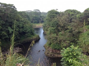 A Makai (ocean side) veiw from the top of the Rainbow Falls upper lookout. Photo: Jamilia Epping.