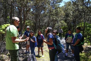 Keiki on a species inventory during the 2015 BioBlitz. NPS photo.