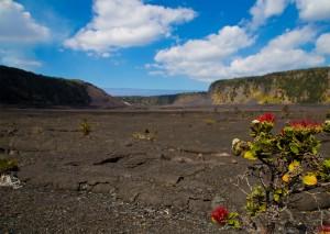 Kīlauea Iki Trail. NPS photo/Janice Wei.