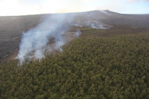 The Nov. 25, 2015, breakout that began as a rupture from the tube supplying the June 27 lava flow advanced slowly to the northeast of Pu'u 'Ō'ō (background) and reached the forest in mid-December, but still poses no immediate threat to Puna communities. USGS image.