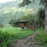 Muliwai Trail & Waimanu Campground Temporary Closure