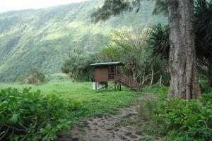 Waimanu campsite. Department of Land and Natural Resources image.
