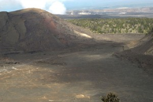 A daytime view of the Kilauea Iki trail, located in Hawai'i Volcanoes National Park. NPS photo.