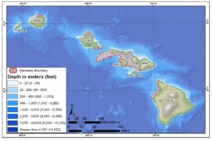 Hawaiian Islands Humpback Whale National Marine Sanctuary file image.