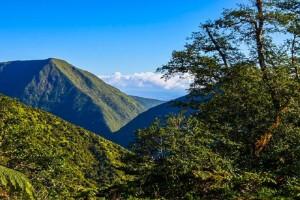 Kohala mountains. File image by James Grenz.
