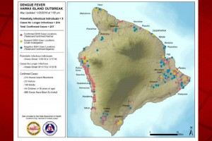 Red pins represent confirmed cases of dengue fever, yellow pins represent potential dengue fever cases under investigation, and blue pins represent cases that turned out to be negative. Hawai'i County Civil Defense map, as of Jan. 25.