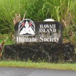 Humane Society Offers Pet Safety Tips During Storms