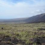 Earthquake Shakes Kīlauea's South Flank