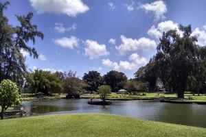 Lili'uokalani Park, Hilo. File photo by Chris Yoakum.