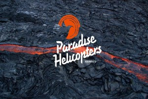 Paradise Helicopters image.