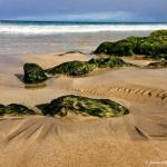Quantifying Shoreline Change on Hawai'i Island