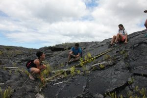 Campers explore and study the lava fields of Kalapana in Puna. Science Camp of America courtesy photo.