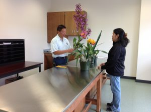 Plant Quarantine inspectors Donn Yanagisawa and Christine Yafuso at the new inspection counter. Photo courtesy the Department of Agriculture.