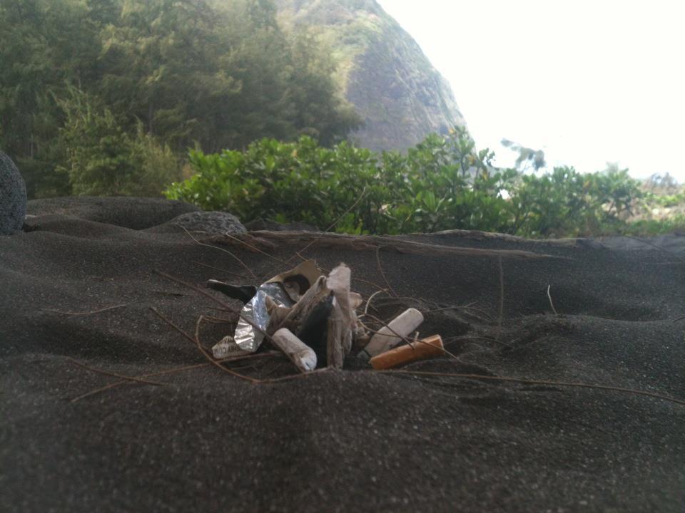 Hawaiian Good Food Waipio