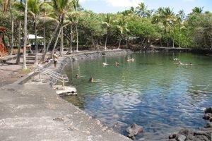 Ahalanui Beach Park. File photo by Dave Smith.
