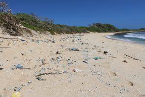 Marine debris, Kahuku, O'ahu. DLNR photo.