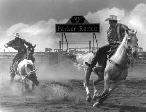 Parker Ranch photo.
