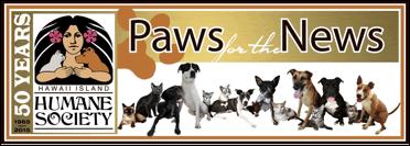 Big Island Hawaii Pet Adoption