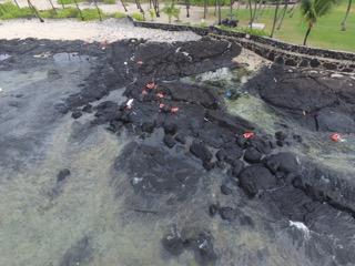 The Coast Guard is responding to the grounding of the Spirit of Kona on Hawai'i Island. Photo: Cates International