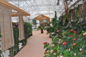Akatsuka Orchid Gardens photo.