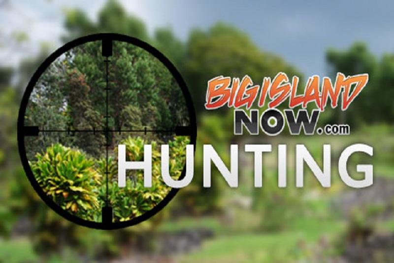 hunting graphic BIN