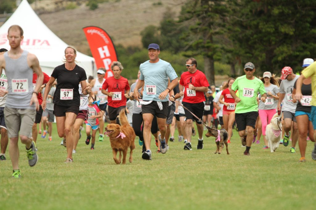 SIXTH ANNUAL BIENI KOHLER-JOHNSON 5K FUN RUN AND DOG WALK AT HAWAII PREPARATORY ACADEMY