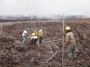 Park staff install the cat-proof fence in rough and rugged high-elevation lava fields on the slopes of Mauna Loa. The five-mile-long fence protects more than 600 acres of Hawaiian petrel habitat, and could be the longest of its kind in the United States. NPS Photo.