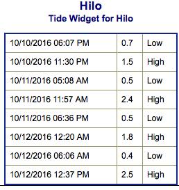 screen-shot-2016-10-10-at-6-11-53-pm