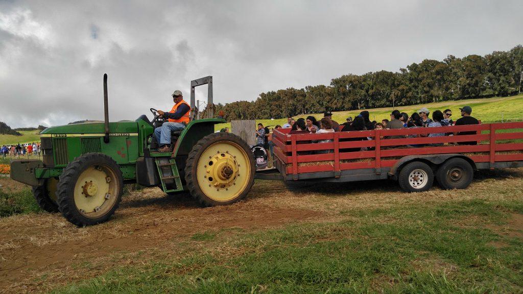 tractor-hay-rVisitors of Kohala Mountain Educational Farm, enjoying a hayride around the farm on Saturday, Oct. 22, 2016, driven by Farmer Benjie Kent. Photo: Crystal Richard.ide-kmf