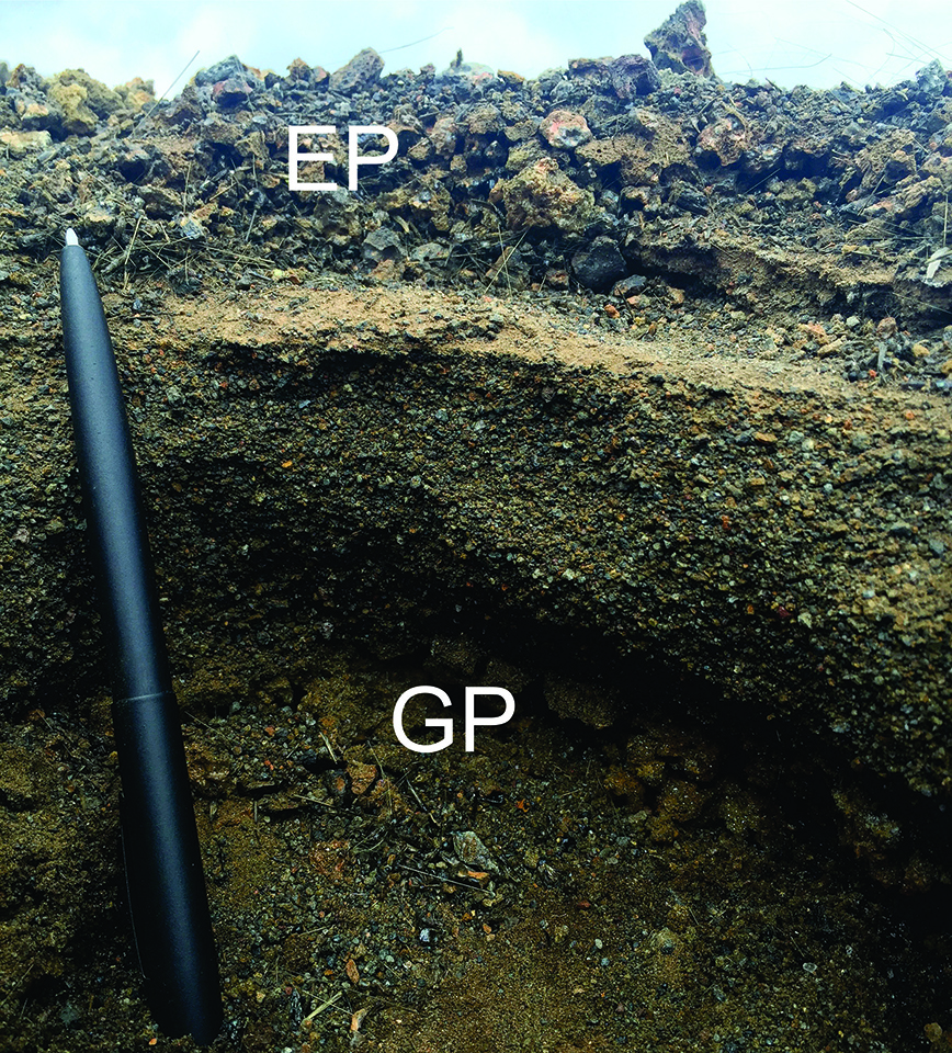 A past assumption about pumice deposits on Kīlauea Volcano has recently been proven wrong. In this photo, the eastern pumice (EP) can be seen above the golden pumice (GP), with stream deposits between the two. Photo courtesy of Sebastien Biasse, University of Hawaiʻi at Mānoa.