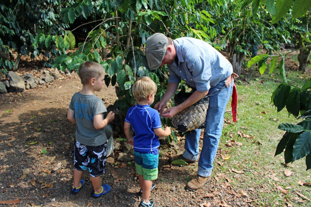 Kona Coffee Living History Farm Celebrates Spring Break   Big Island Now