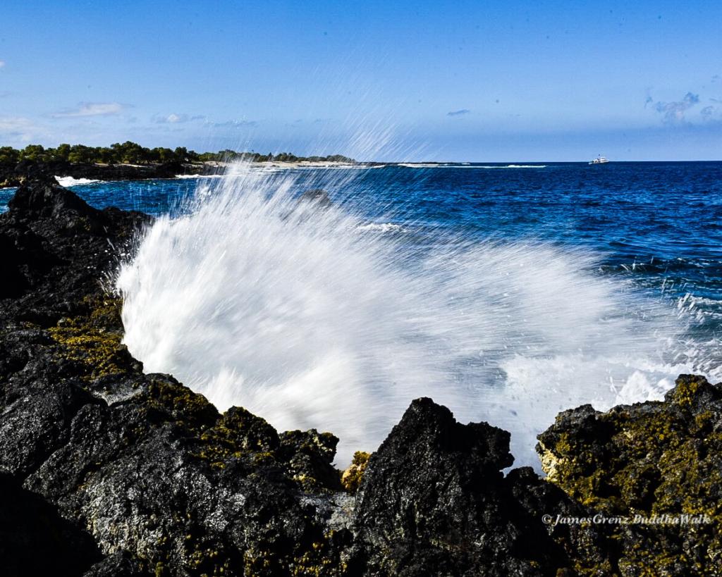 Surf Swell Big Island