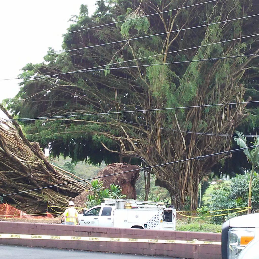 Power Outages Big Island Hawaii