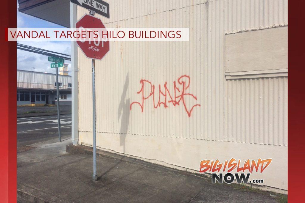 Target Big Island Hilo