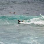 February 24, 2020 Surf Forecast