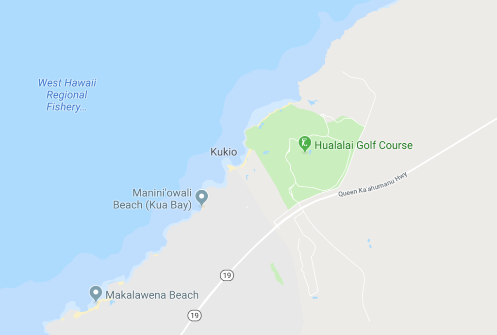 Man, 25, critically injured by shark bite off Hawaii island beach