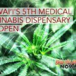 Hawai'i DOH Approves 5th Medical Cannabis Dispensary