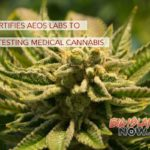 DOH Certifies Aeos Labs to Begin Testing Medical Cannabis