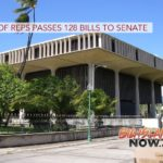 House of Reps Passes 128 Bills to Senate